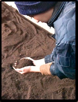 フルボ酸を含んだ培養土